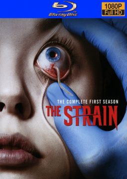 the_strain_s1_bd_scan