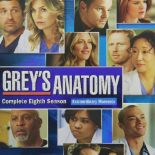Grey's Anatomy: 8ª Temporada (2012) WEB-DL 720p Dual Áudio Torrent