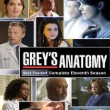 Grey's Anatomy: 11ª Temporada (2015) WEB-DL 720p Dual Áudio Torrent