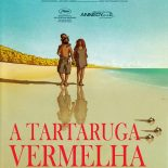 A Tartaruga Vermelha (2006) BluRay 720p Dublado Torrent