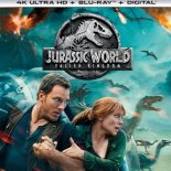 Jurassic World: Reino Ameaçado (2018) BluRay 720p - 1080p - 3D e 4K Dual Áudio/ Dublado Torrent