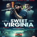 Doce Virginia (2018) BluRay 720p e 1080p Dublado / Dual Áudio Torrent