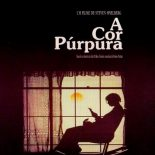 A Cor Púrpura Torrent (1985) Dual Áudio BluRay 1080p – Download