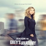 Grey's Anatomy 16ª Temporada Torrent (2019) Dual Áudio / Legendado WEB-DL 720p | 1080p – Download