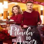 Pitada do Amor Torrent (2019) Dual Áudio WEB-DL 1080p FULL HD Download