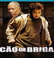Cão de Briga Torrent (2005) Dublado / Dual Áudio BluRay 1080p Download