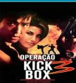 Operação Kickbox 3 – Sem Retorno Torrent (1995) Dual Áudio / Dublado BluRay 1080p – Download