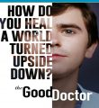 The Good Doctor: O Bom Doutor 4ª Temporada Torrent (2020) Dual Áudio / Legendado WEB-DL 720p | 1080p – Download